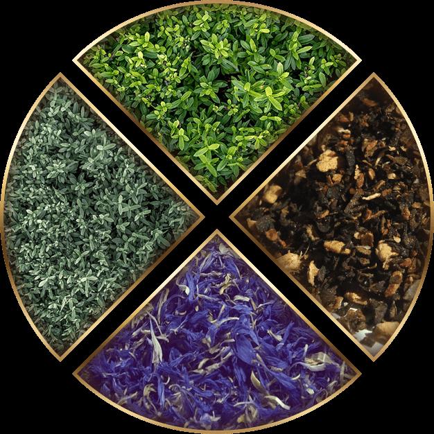 How To Make The Perfect Herbal Tea